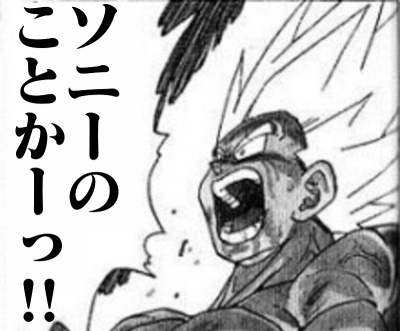 ソニーのことかっ!!!(小)