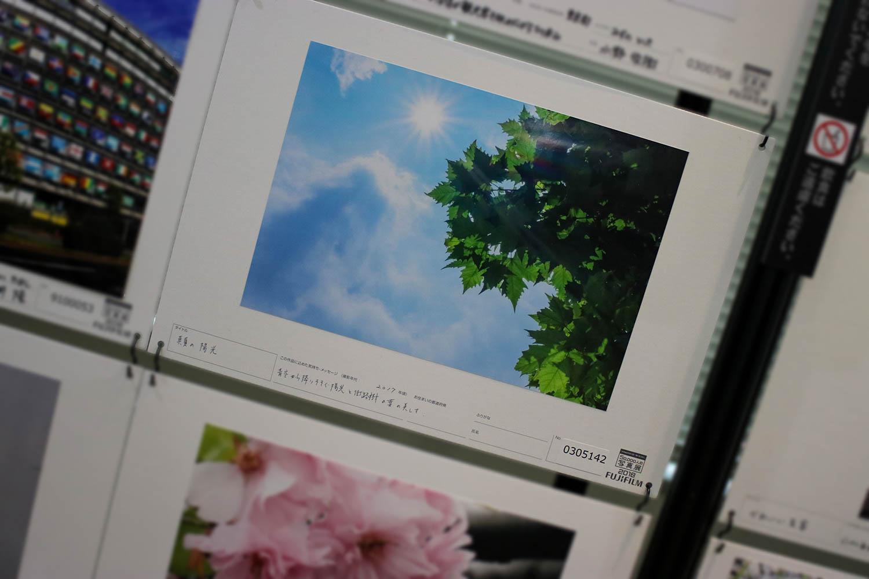 IMG_3151-1500(P)-2.jpg