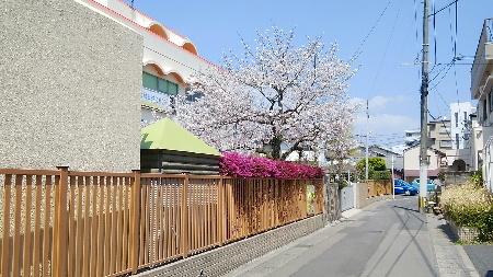 荒田の幼稚園1