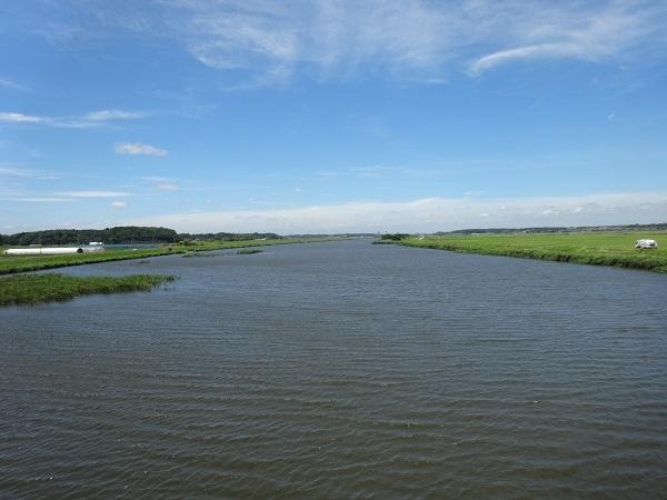180630印旛沼 (2)