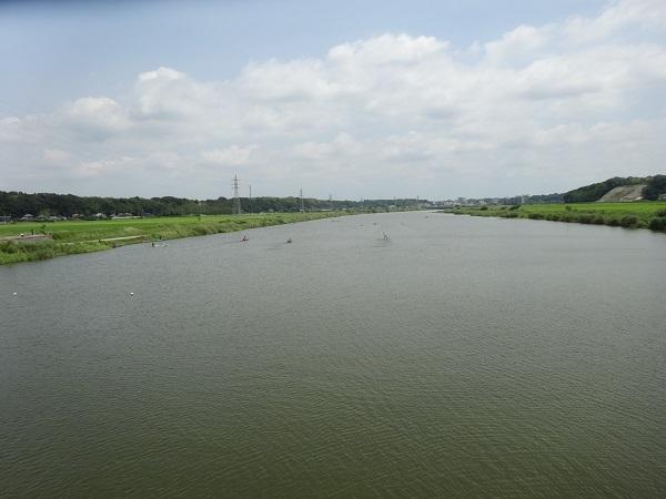 180721印旛沼 (6)