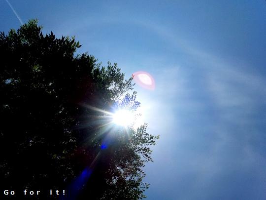 sun 180522