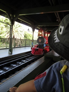 ウェスタンリバ-鉄道