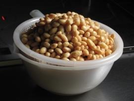 ゆで白大豆IMG_7798