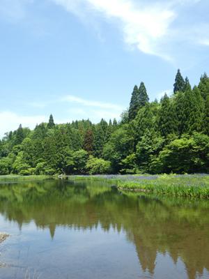 近江八幡探訪35