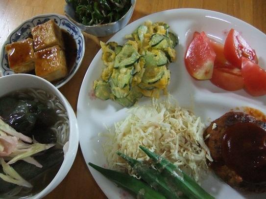 ハンバーグ、茄子素麺、サラダ、炒め物
