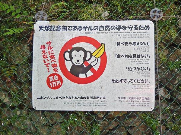 サルに食べ物を与えると罰金1万円