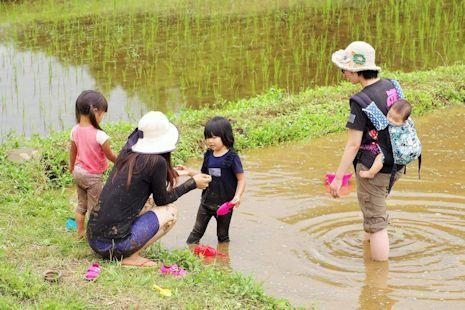 田んぼで泥んこ遊び