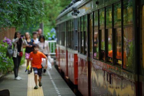 あじさい電車H30-2