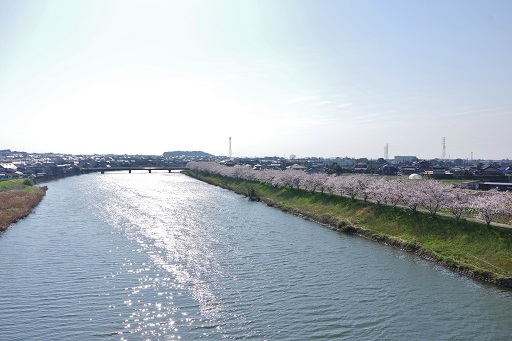 3-28川沿い1