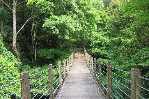 5-17橋景色