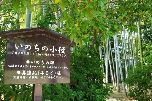 6-2奈大安寺小径