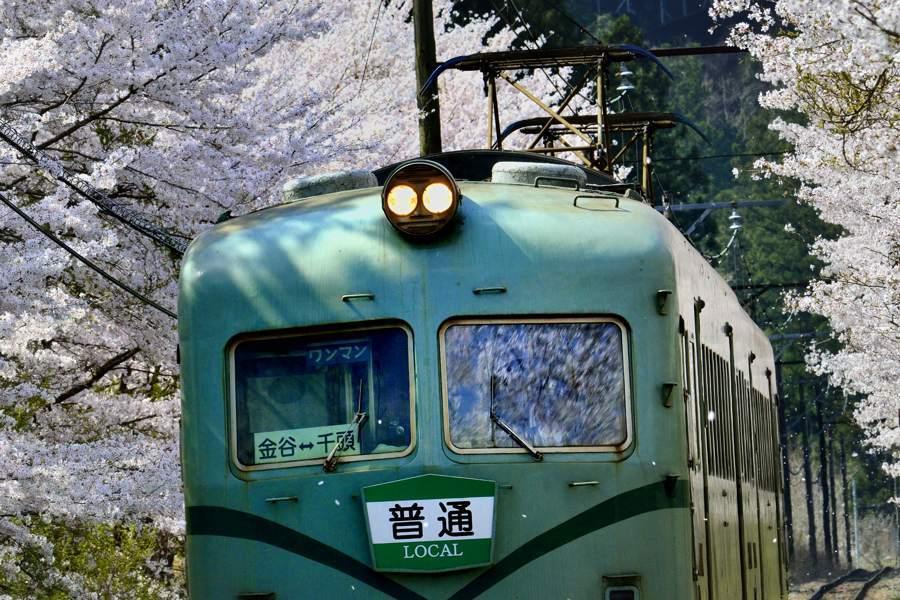 oigawa2018_27323take2b2.jpg