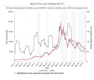 bitcoin boratility45