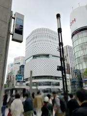 SHIBIRE NOODLES 蝋燭屋 (1)
