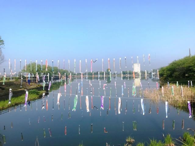 近藤沼公園