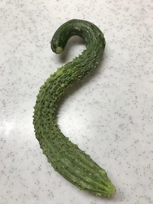 蛇きゅうり