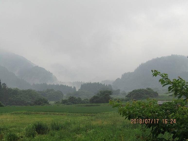 雨の真瀬川6
