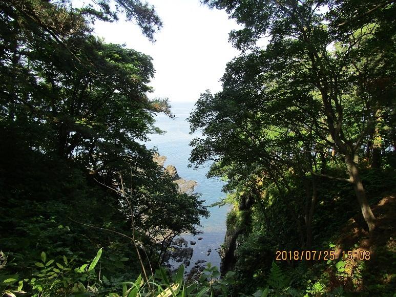 岡崎海岸散策路1
