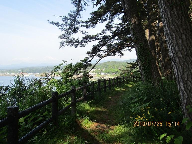 岡崎海岸散策路3
