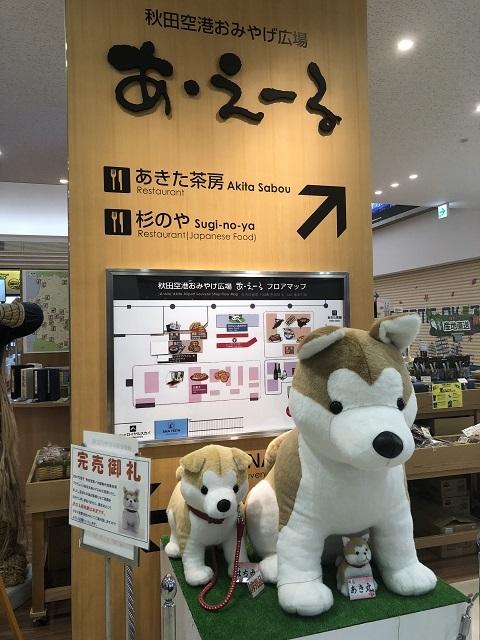 秋田空港3