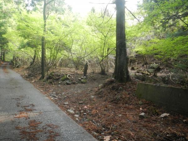 滝子山 002