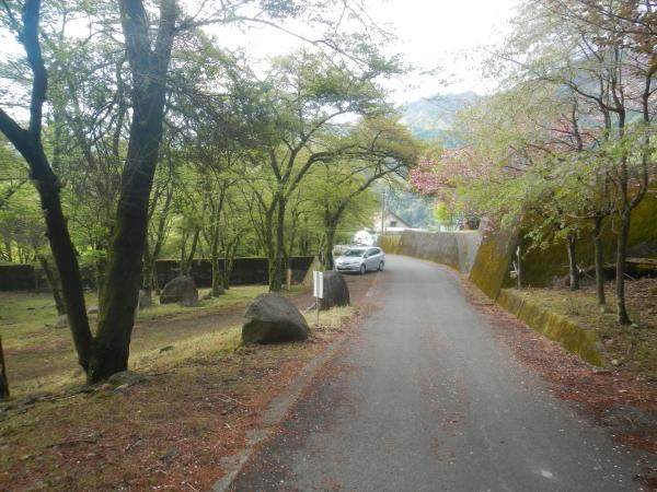 滝子山 001