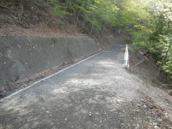 滝子山 011