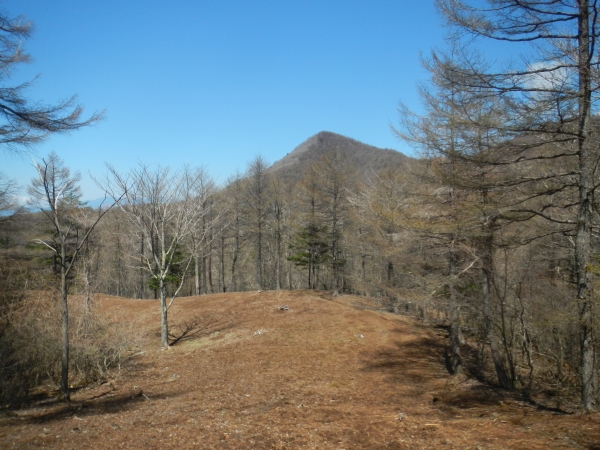 滝子山 060