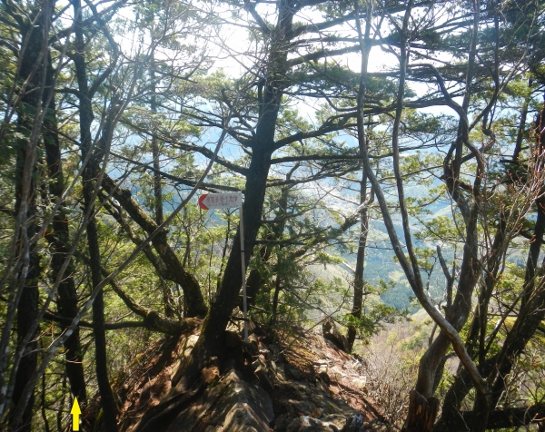滝子山 035