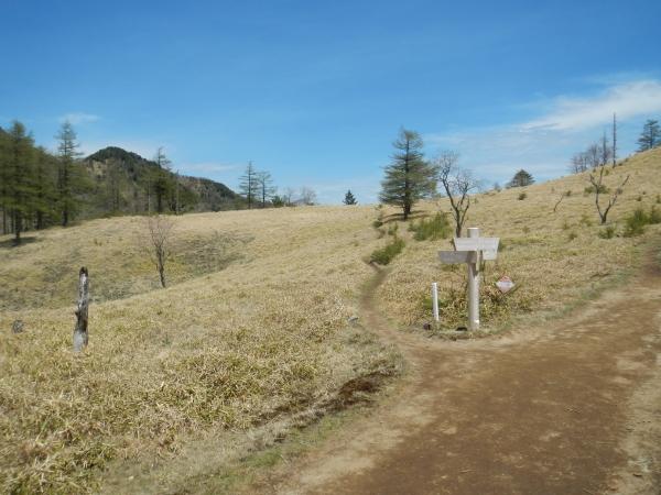 笠取山 068