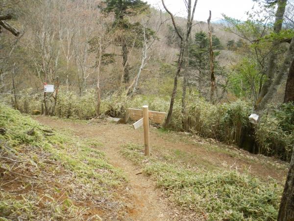 笠取山 103