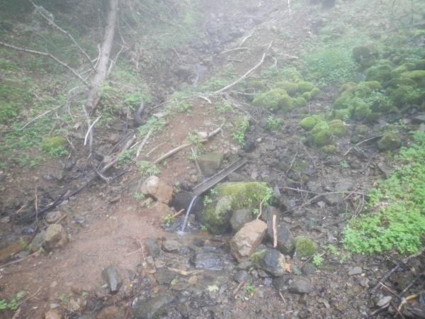 櫛形山 035