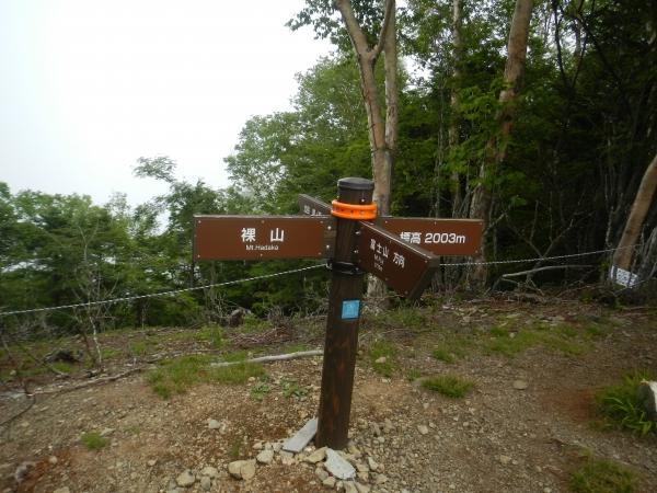 櫛形山 069