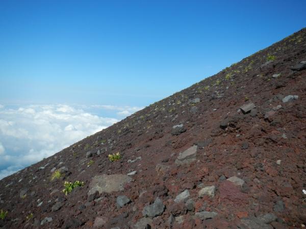 富士山 021