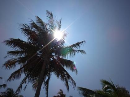 太陽がまぶしい