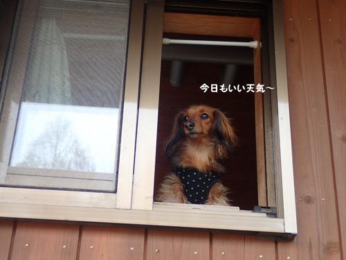 fuji51.jpg
