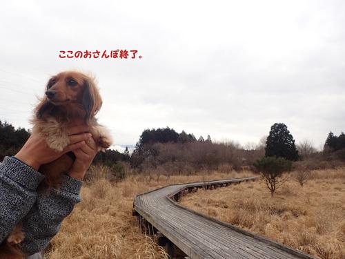 fuji67.jpg