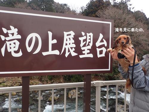 fuji68.jpg