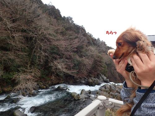 fuji70.jpg