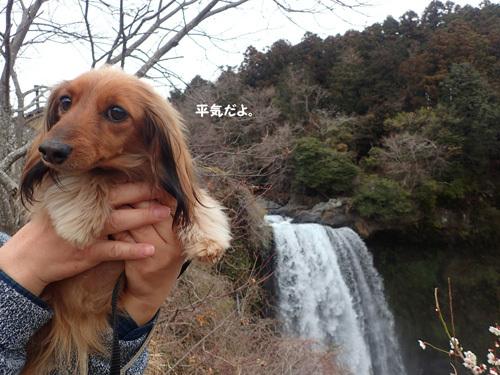 fuji74.jpg