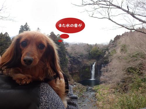 fuji77.jpg
