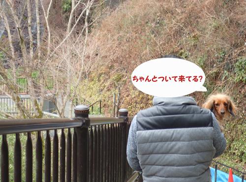 fuji79.jpg