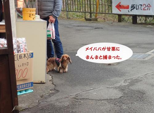 fuji90.jpg