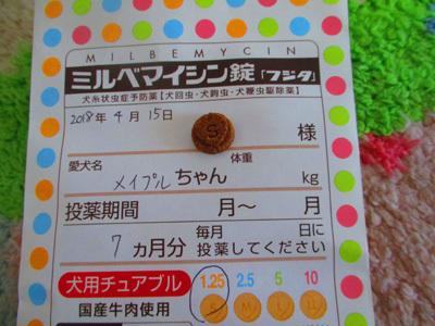 okusuri2.jpg