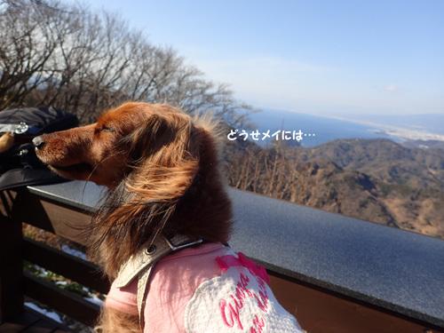panorama24.jpg