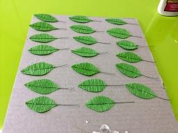 180617_palmtree_leaf02.jpg