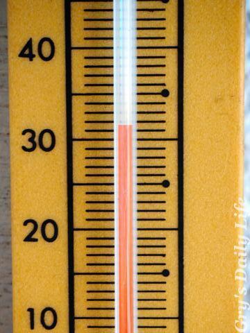 8080304最高気温