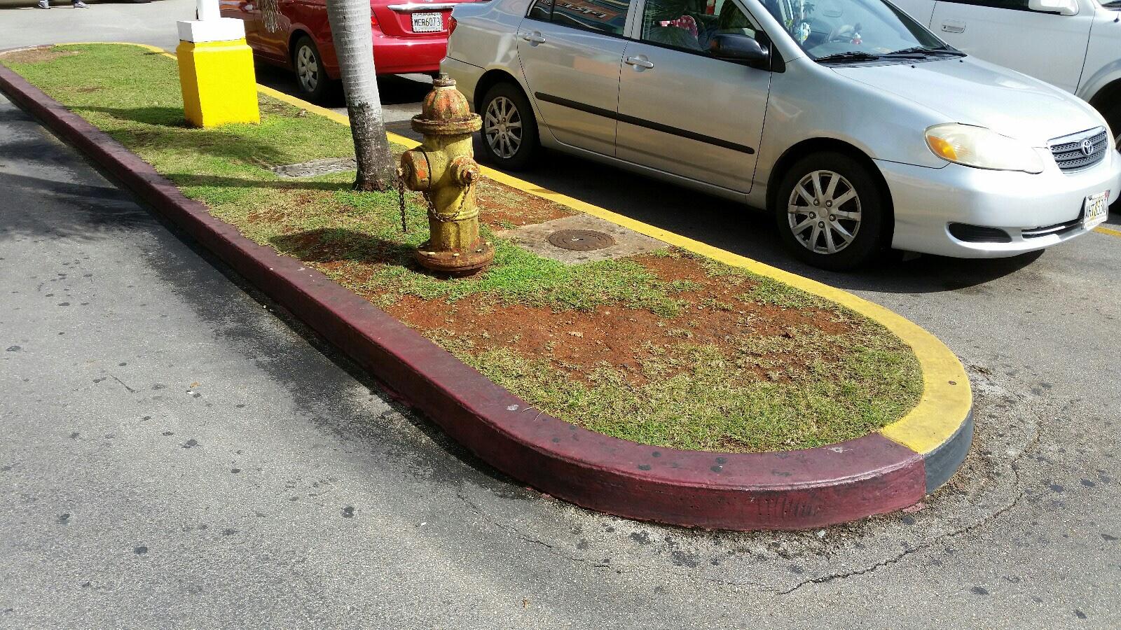 グアム No Parking
