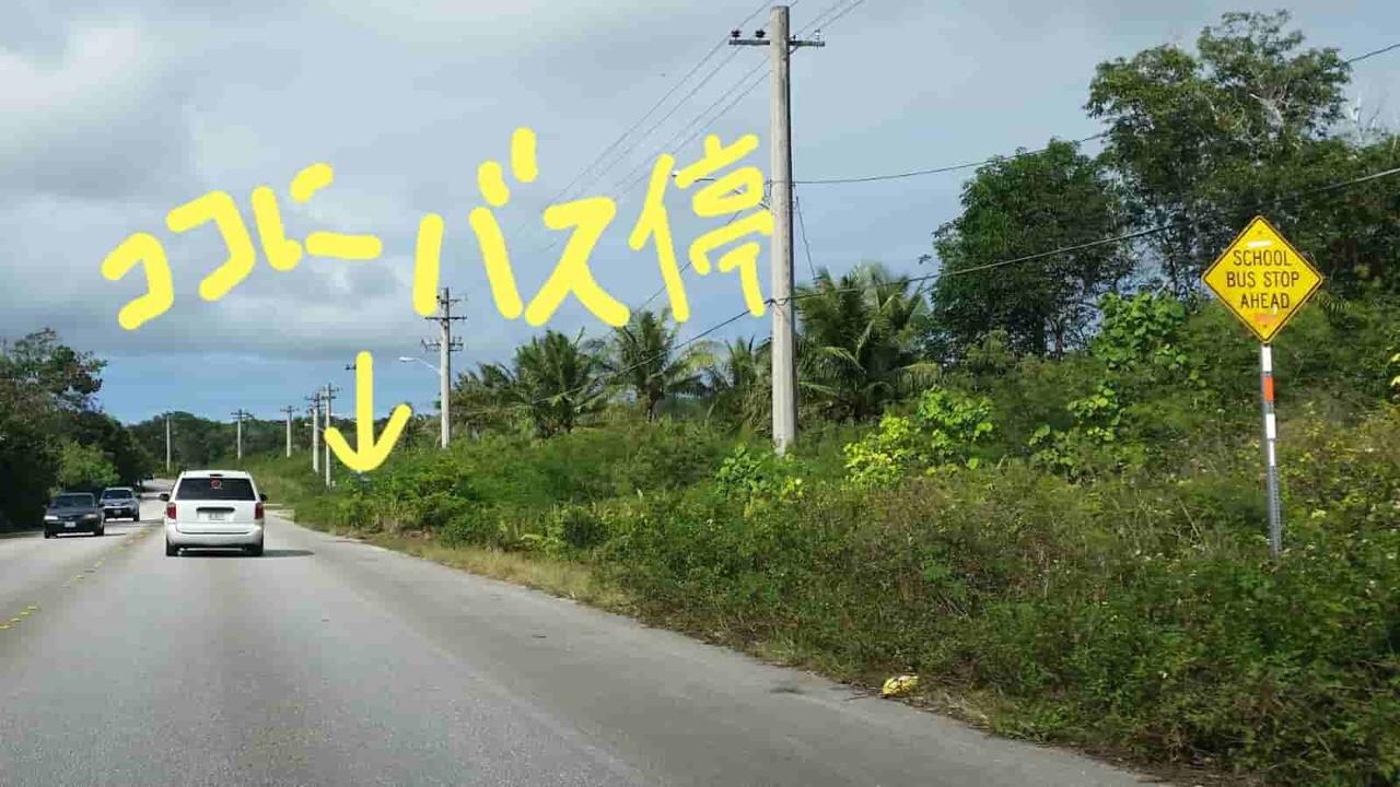 アメリカ グアム 標識 School Bus Stop Ahead